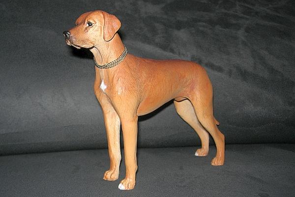 hund011.jpg