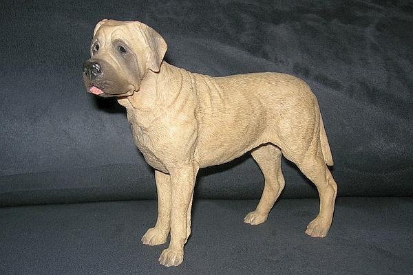 hund012.jpg